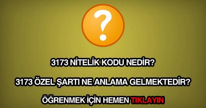 3173 nitelik kodu nedir?